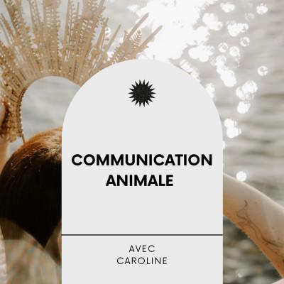 #21 Communication Animale, Interview éveillée avec Caroline cover