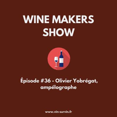 #36 - Olivier Yobrégat, ampélographe cover