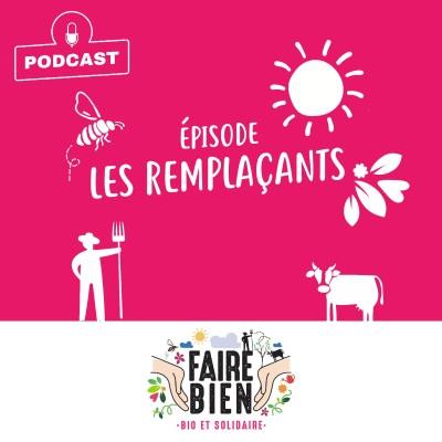 [Les Remplaçants] Céline Collet, déléguée régionale du Service de Remplacement de Normandie cover
