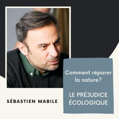 Comment réparer la nature ? Le préjudice écologique - Sébastien Mabile cover