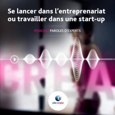 Episode 2 : Se lancer dans l'entrepreneuriat ou travailler dans une start-up cover
