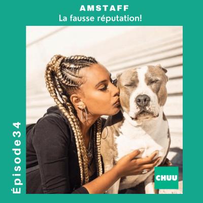 # 34 - AMSTAFF - La fausse réputation ! cover