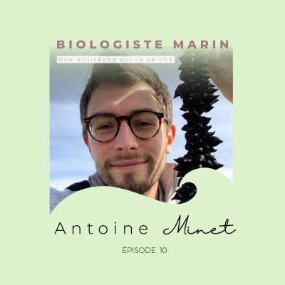 Antoine Minet, biologiste marin : une antisèche sur la seiche cover