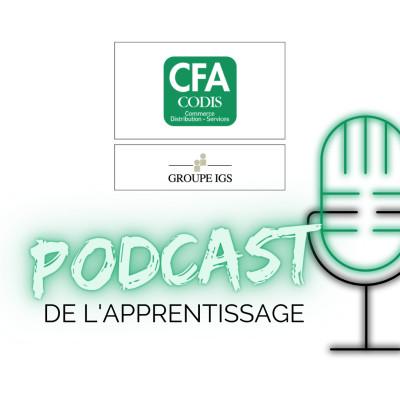 Des formations en alternance sur toute la France - EP 25 cover