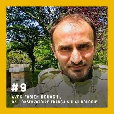 Episode #9 - Pourquoi notre survie dépend des abeilles ?- Entretien avec Fabien Kouachi de l'OFA cover