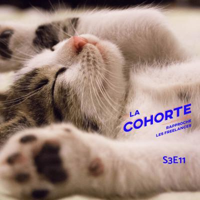 La Cohorte/ S3E11/ Freelance, quel kif cover
