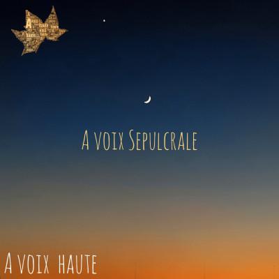 A voix Sépulcrale - Victor Hugo - Funérailles - Emile Augier - Yannick Debain. cover