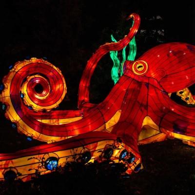 Paris : sculptures lumineuses géantes droit devant ! cover