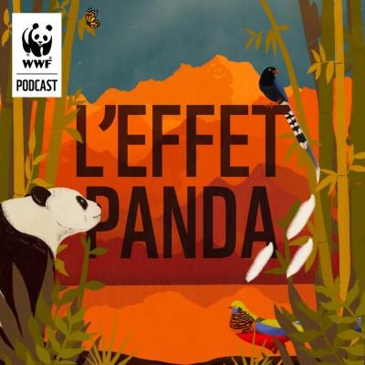 L'Effet Panda cover