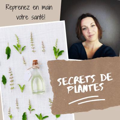 Secrets de plantes cover
