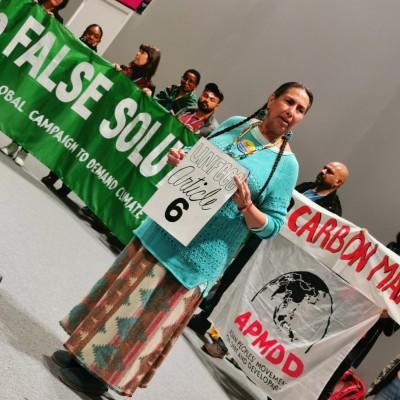 image #2050*COP25 - Jour 3 - Les marchés carbone, au cœur des négociations