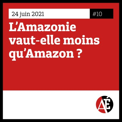 #10 L'Amazonie vaut-elle moins qu'Amazon ? cover