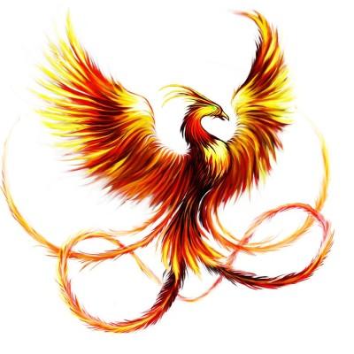 message du phoenix.m4a