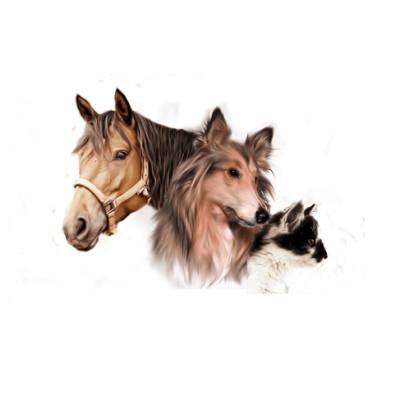 Humeur du jour - se faire vacciner par son vétérinaire - 26 03 2021 - StereoChic Radio cover