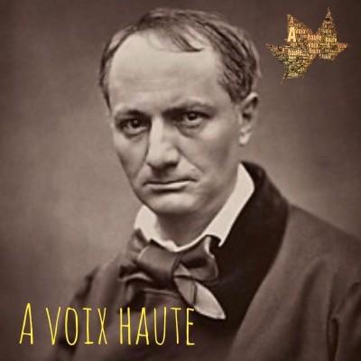 Charles Baudelaire  - Les fleurs du Mal - La Chevelure - Yannick Debain. cover