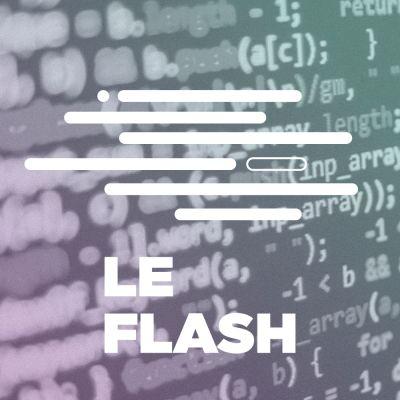 image Flash - La disparition du code informatique