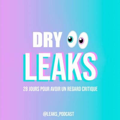 Dry Leaks - 28 jours pour avoir un regard critique cover