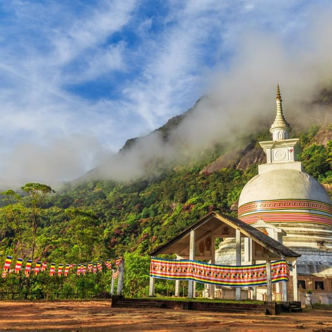 Clémence au Sri Lanka - 06 11 2020