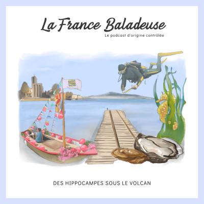 Des hippocampes sous le volcan : podcast sur l'étang de Thau cover