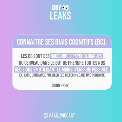 Dry Leaks - Connaitre ses biais cognitifs (2/28) cover