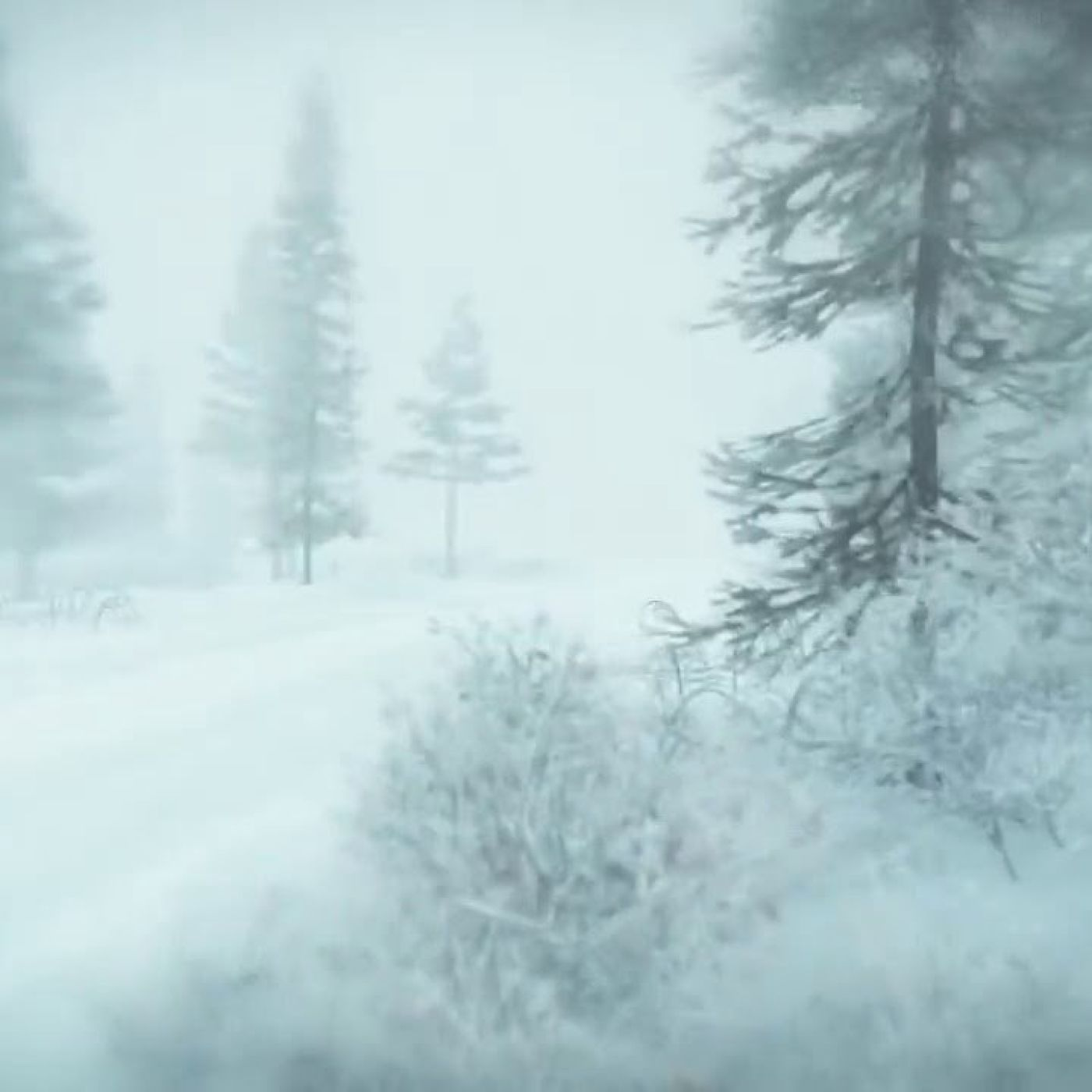 Winter Storm Ambience - Heavy Snowstorm  Blizzard Howling Wind Sounds