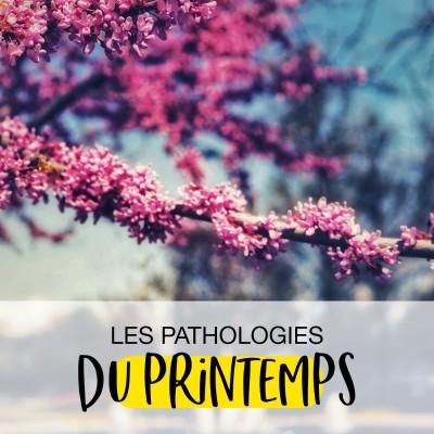 Les pathologies du Printemps cover
