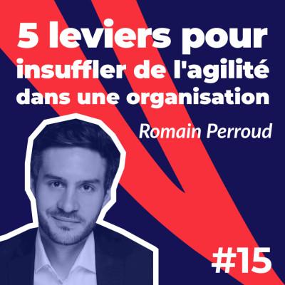 #15 - 5 leviers pour insuffler de l'agilité dans une organisation - Romain Perroud de La Fabrique Numérique cover
