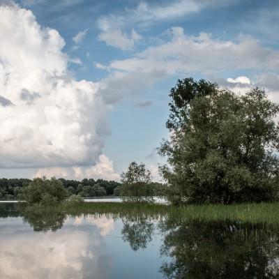 Cap sur l'Orient : entre forêts et lacs cover