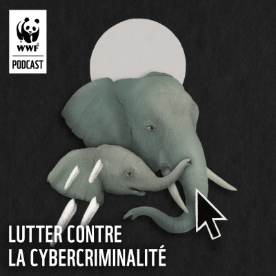 Lutter contre la cybercriminalité cover