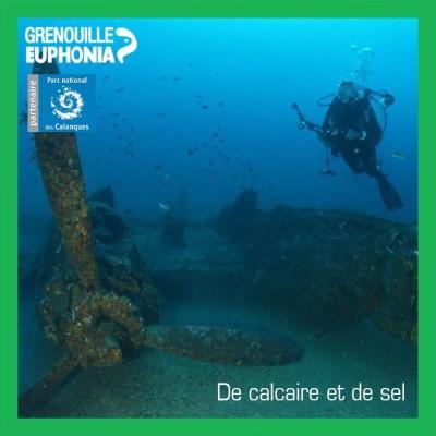 De calcaire et de sel   Saint Exupéry, Luc Vanrell et le P38 cover
