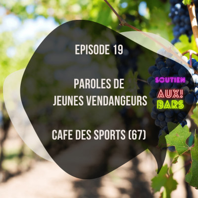 Episode 19: Paroles de vendangeurs au Café des sports à Strasbourg (67) cover