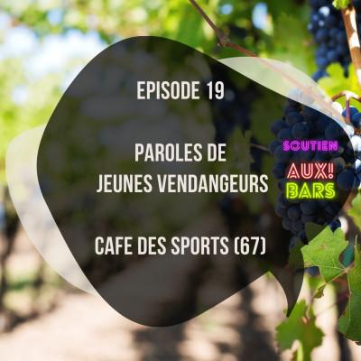 Episode 19: Paroles de vendangeurs au Café des sports à Strasbourg (67) cover